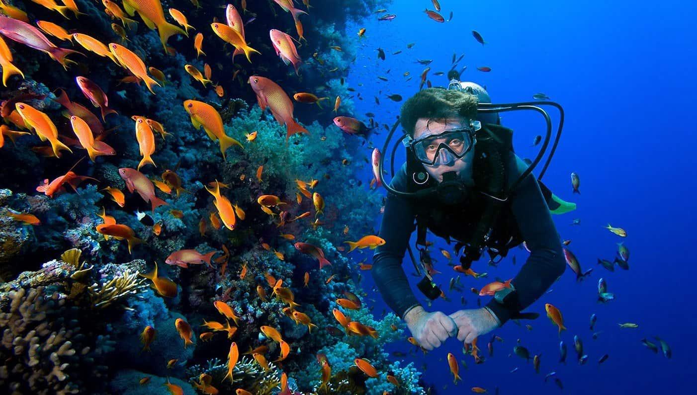 تجربة الغوص في مياه ابوظبي