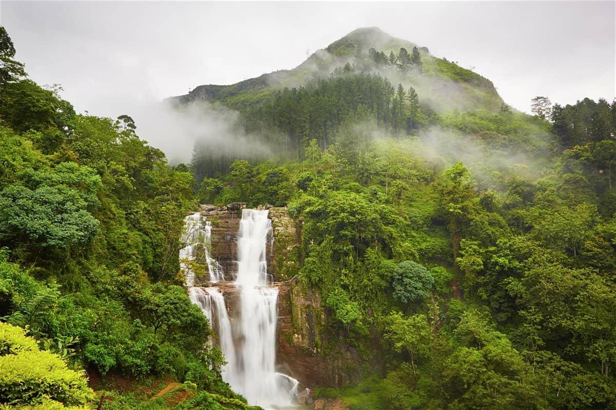 أهم 5 أماكن سياحية في نوراليا سريلانكا