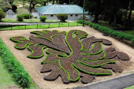 افضل 7 انشطة في حديقة هاكغالا النباتية نوراليا