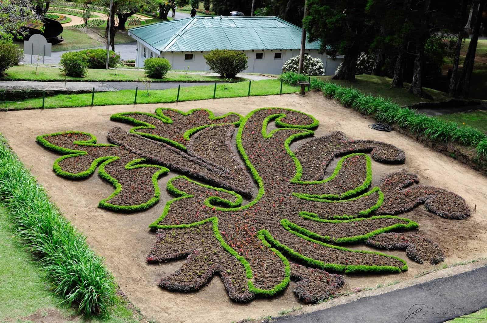 أفضل 7 أنشطة في حديقة هاكغالا النباتية نوراليا
