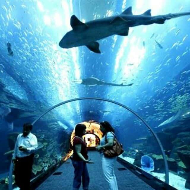 زيارة عالم لانكاوي المائي – ماليزيا