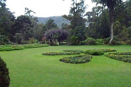 اهم 6 انشطة في حديقة فكتوريا نوراليا سريلانكا