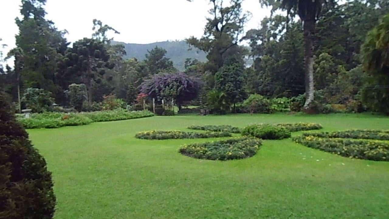 أهم 6 أنشطة في حديقة فكتوريا نوراليا سريلانكا