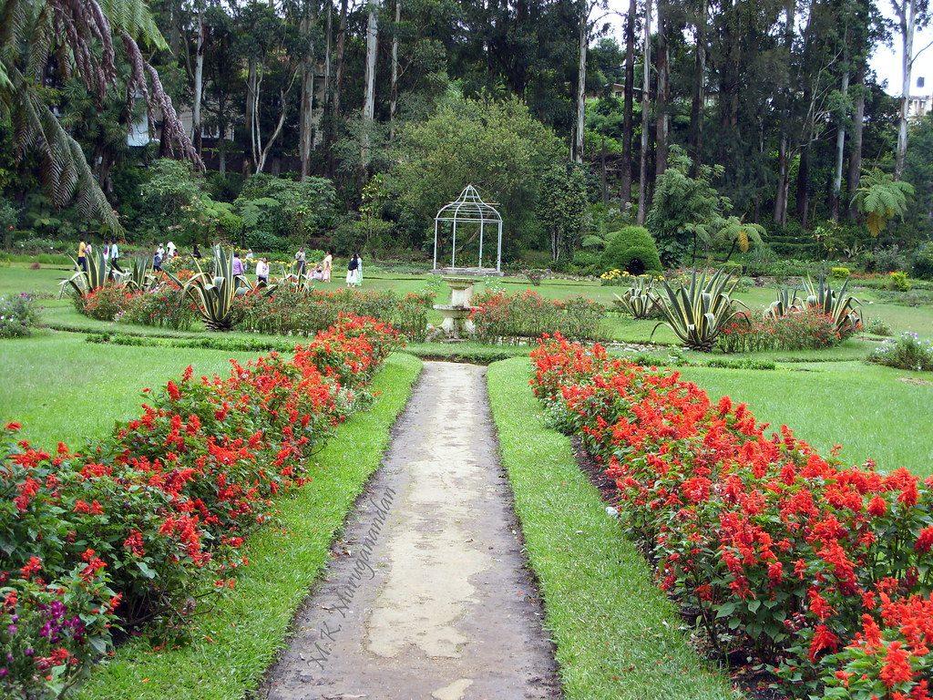 اهم 6 انشطة في حديقة فكتوريا نوراليا سريلانكا عطلات