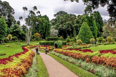 افضل 6 انشطة الحديقة النباتية كاندي سريلانكا