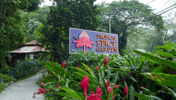 زيارة حديقة التوابل – بينانج