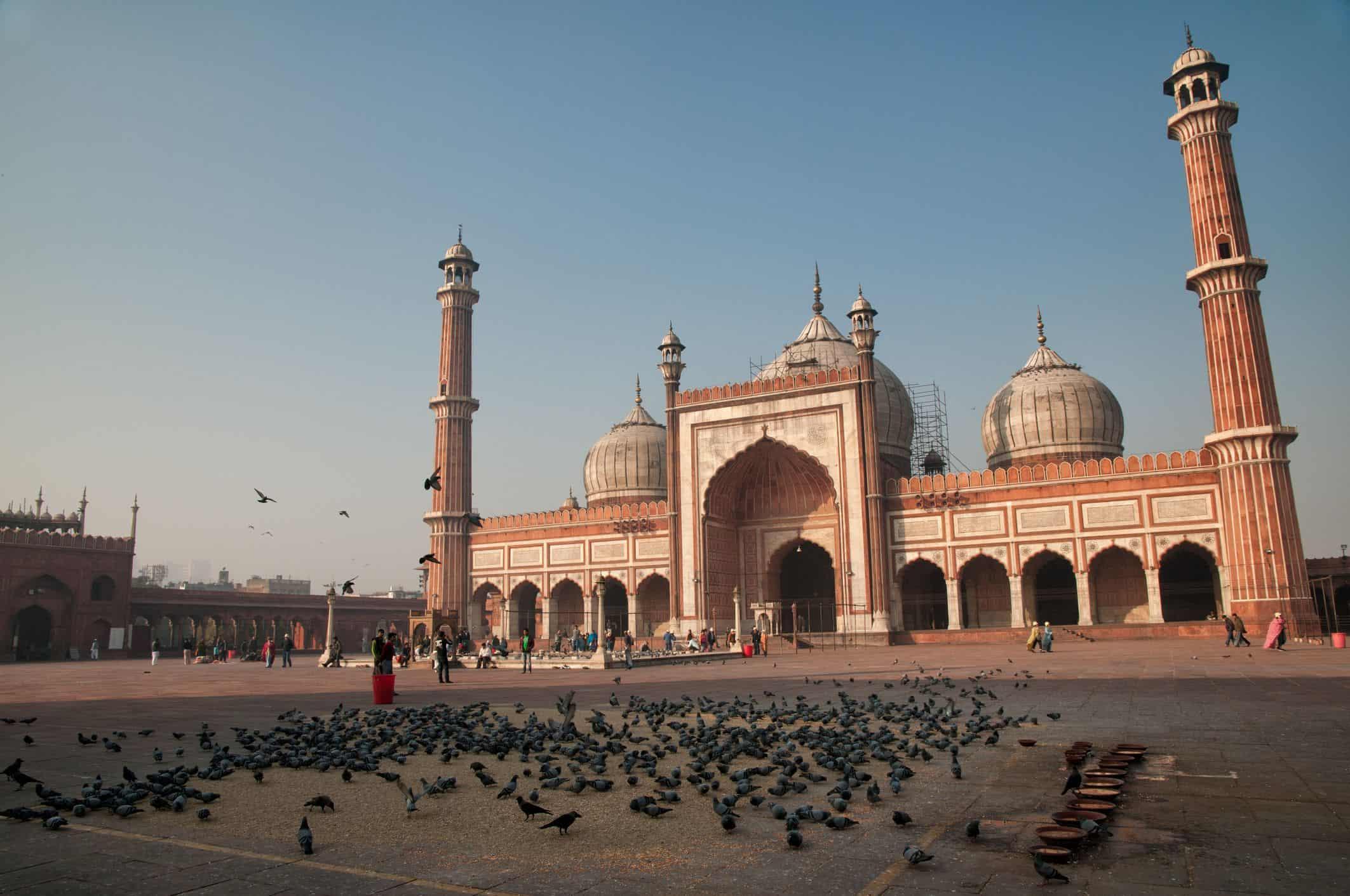 افضل 5 انشطة في المسجد الجامع دلهي الهند
