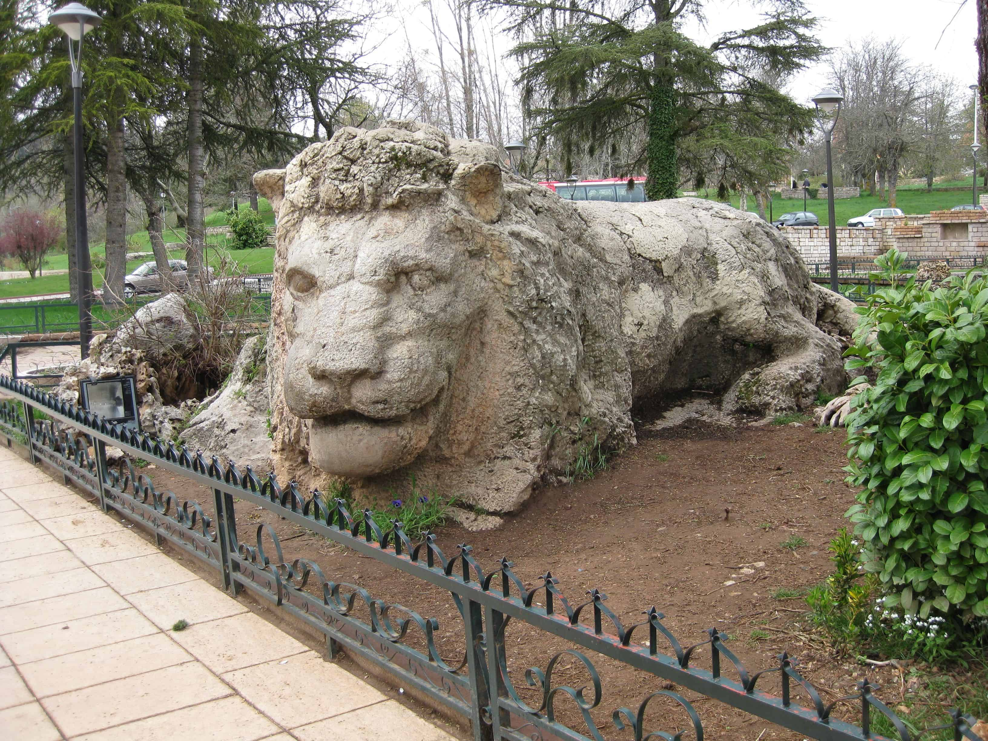 حديقة الأسود العرائش المغرب
