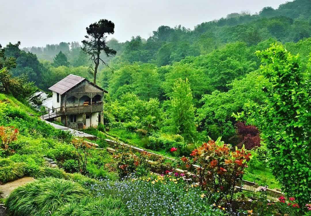 حديقة Batumi Botanical Garden
