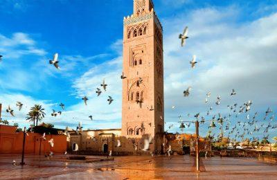 اجمل 7 من حدائق مراكش المغرب