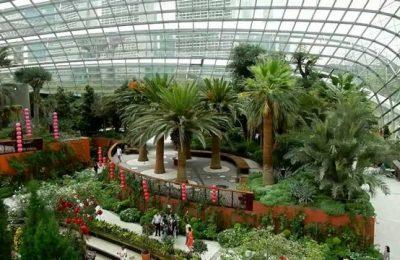 افضل 9 انشطة في حدائق الخليج سنغافورة
