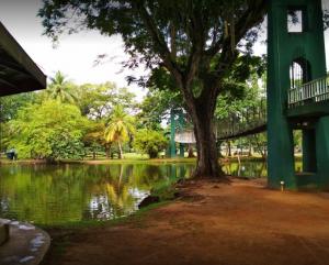 حديقة فيهاراماهاديفي