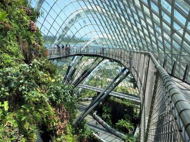 حدائق الخليج سنغافورة