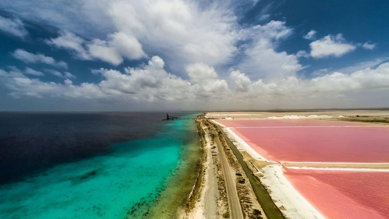 أهم 5 أنشطة عند الشاطئ الوردي في لومبوك اندونيسيا
