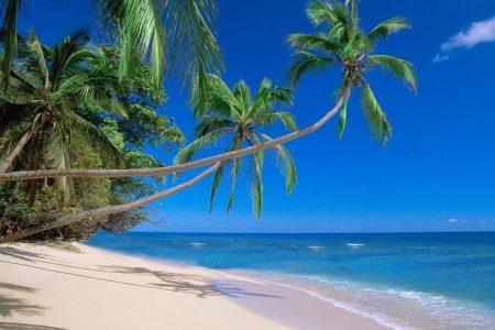 اهم 4 اشياء تشجعك على السياحة في غوا