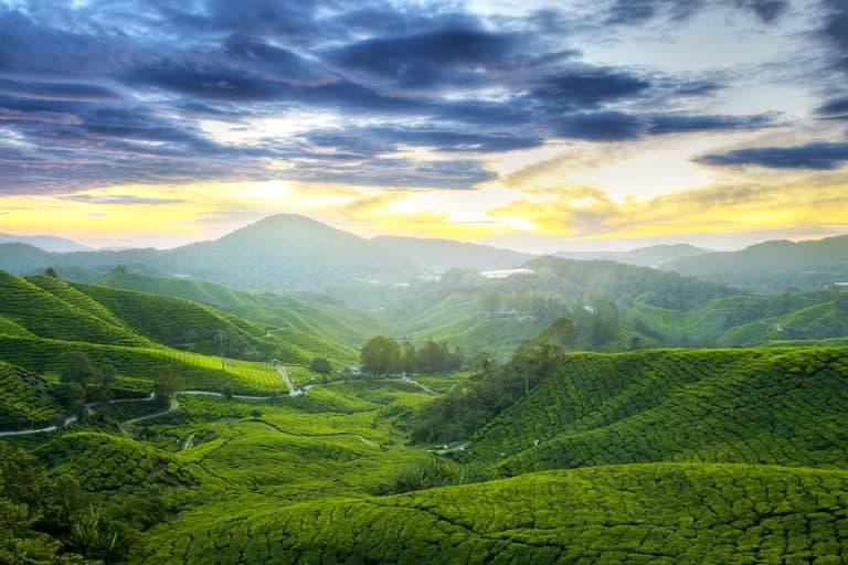 اجمل 3 وجهات لقضاء شهر العسل في ماليزيا