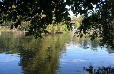 افضل 4 انشطة في بحيرة سوفابلان لوزان سويسرا