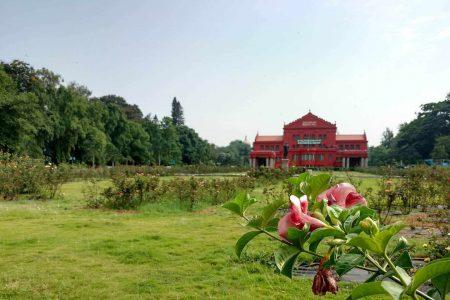 افضل 4 انشطة عند زيارة حديقة كوبون بنجلور الهند