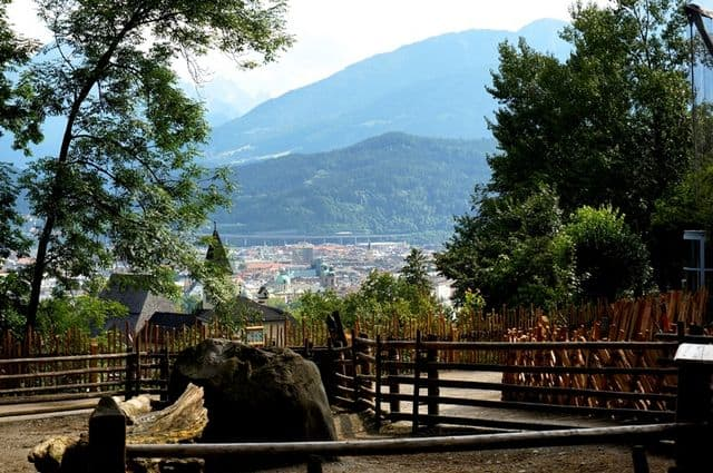 افضل 5 انشطة في حديقة حيوانات الالب انسبروك النمسا