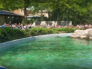 حديقة حيوانات برونكس نيويورك