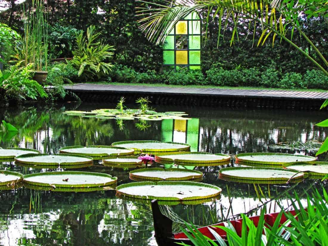 افضل 5 انشطة في حديقة التوابل بينانج ماليزيا