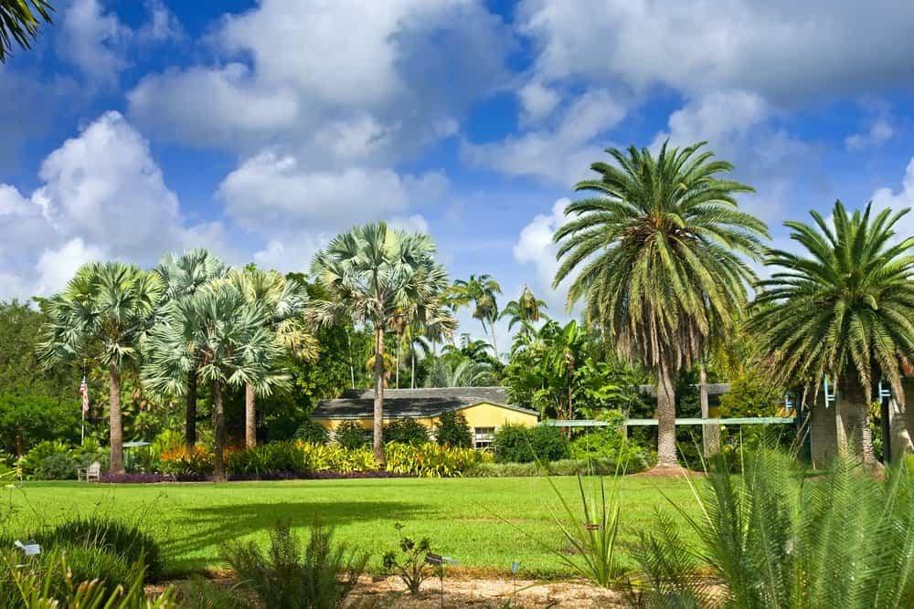 زيارة حدائق شاطئ ميامي الطبيعية