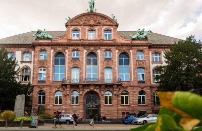 افضل 4 انشطة في متحف التاريخ الطبيعي فرانكفورت المانيا