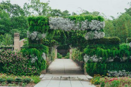 افضل 4 انشطة في الحدائق النباتية في قرطبة اسبانيا