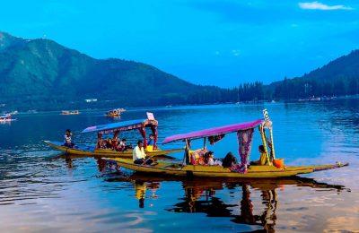 افضل 4 انشطة عند زيارة بحيرة دال في كشمير الهند