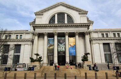 افضل 4 انشطة في المتحف الوطني للتاريخ الطبيعي واشنطن