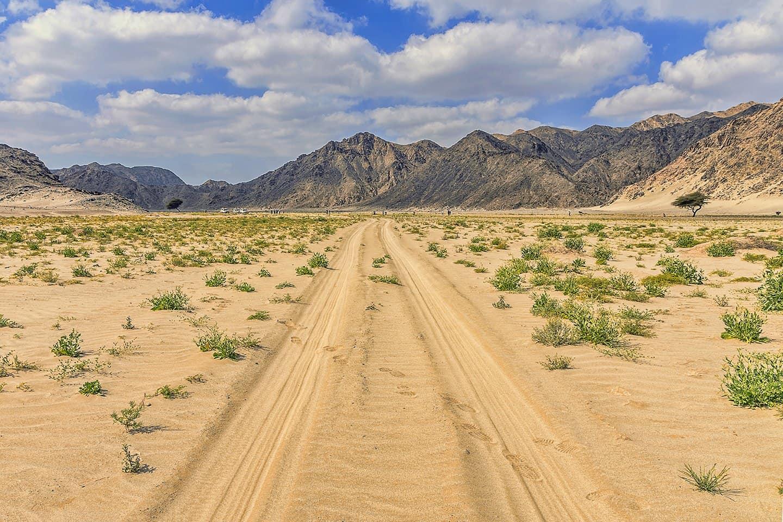 محمية وادي الجمال مرسى علم (2)
