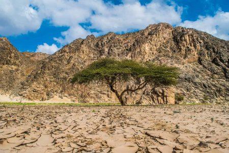 افضل 9 انشطة في محمية وادي الجمال مرسى علم مصر