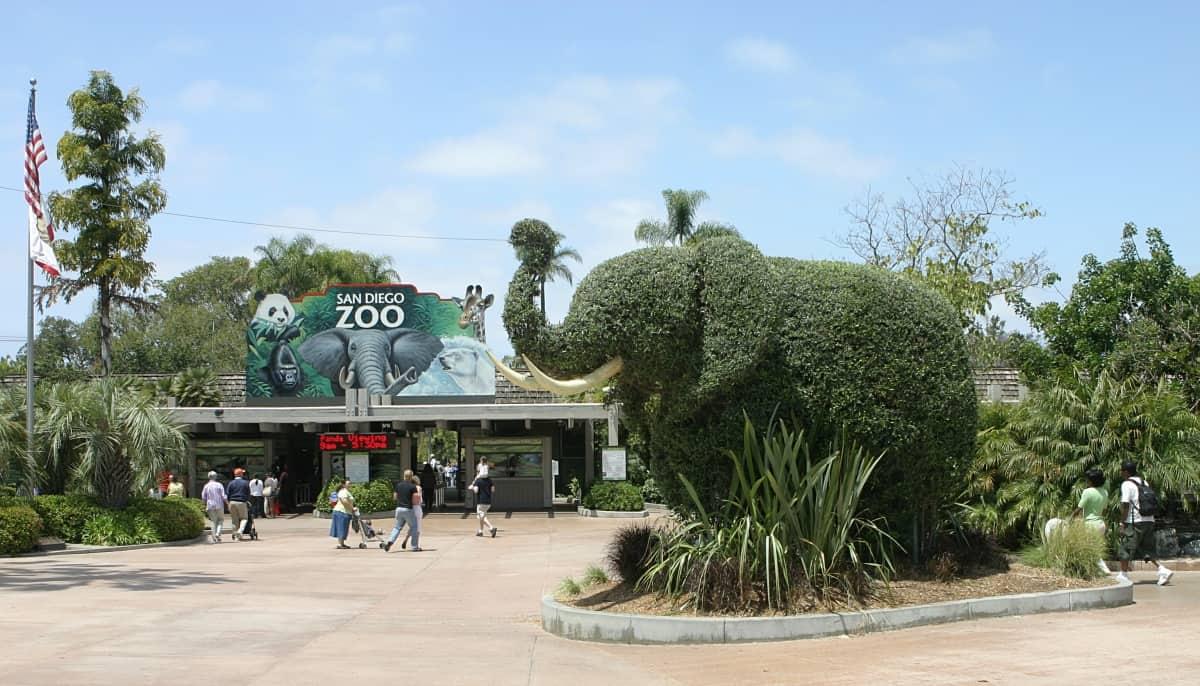من اشهر اماكن سياحة في سان دييغو حديقة حيوان San Diego