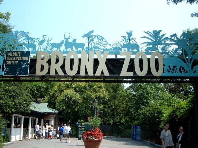 حديقة حيوانات برونكس