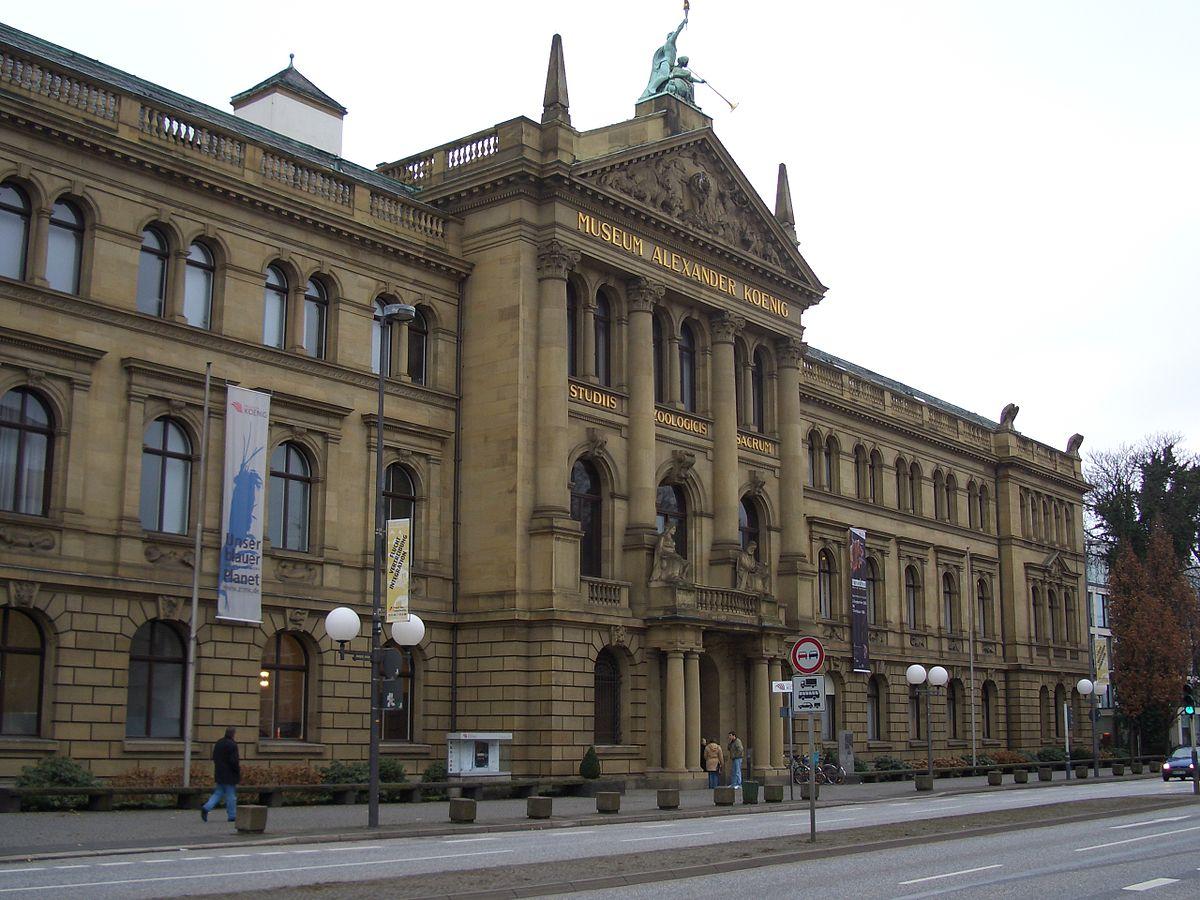 متحف ألكسندر كونيج