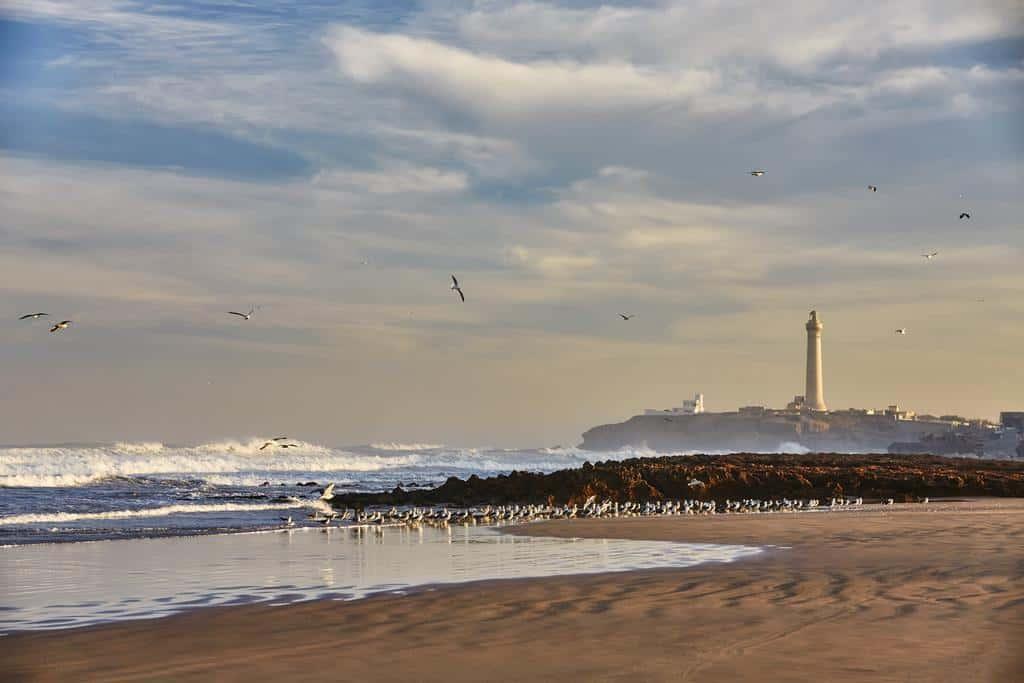 افضل 6 من فنادق الدار البيضاء على البحر الموصى بها 2020