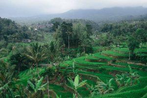 الوصول لمدينة باندونق – اندونيسيا