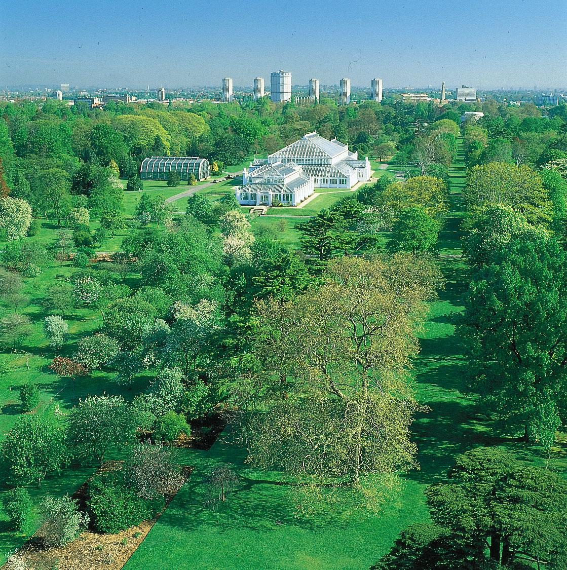 حدائق كيو النباتية لندن