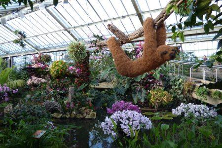 افضل 7 انشطة في حدائق كيو النباتية لندن