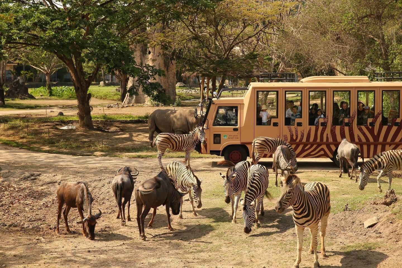صورة لحديقة الحيوانات في بالي دليل بالي