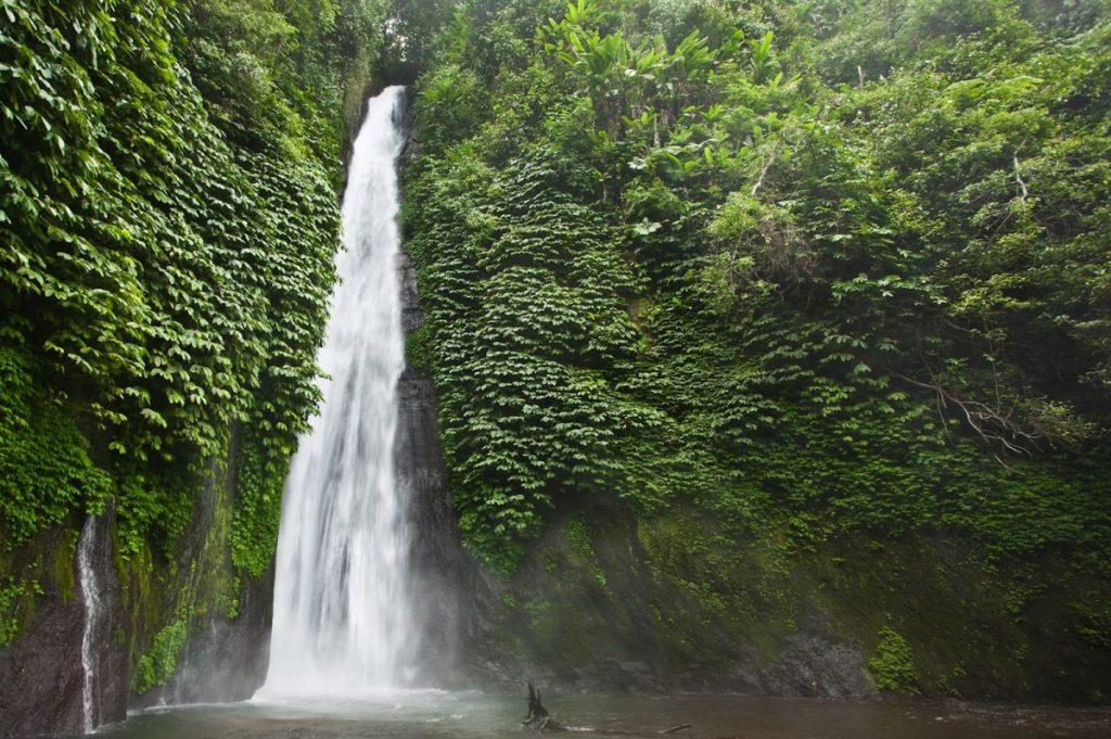 صورة لشلال شامبوهان في بالي