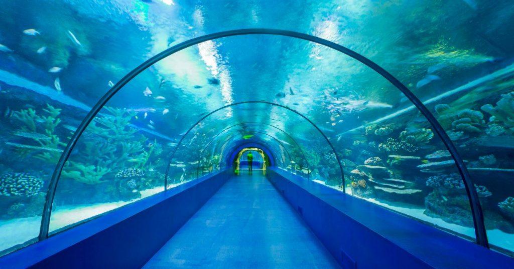 Antalya Aquarium أنطاليا أكوريوم