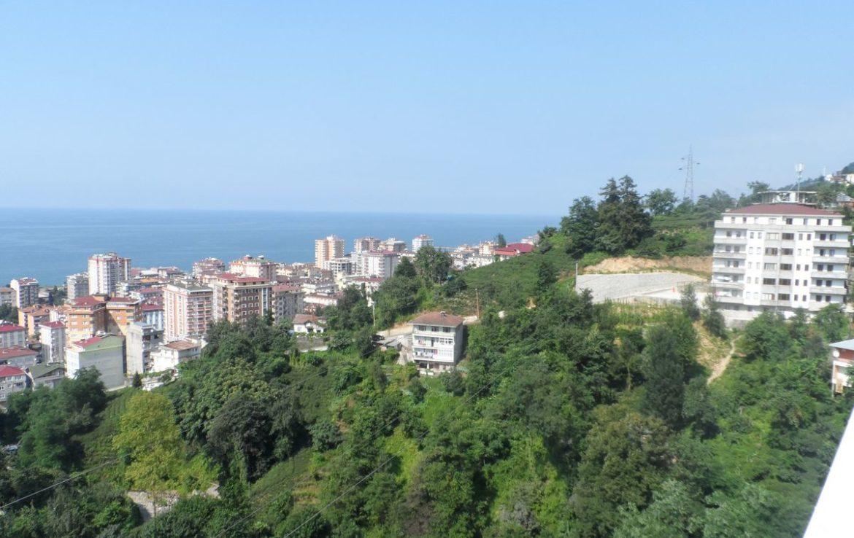 مدينة ريزا